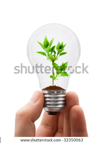 Hand with lamp and plant isolated on white background - stock photo