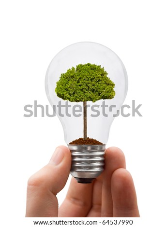 Hand with lamp and tree isolated on white background - stock photo