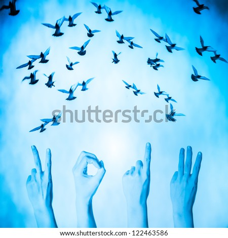 hand with 2013 number and flying doves new year background - stock photo