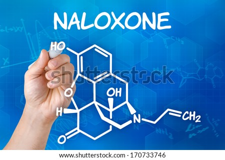 Hand with pen drawing the chemical formula of naloxone - stock photo