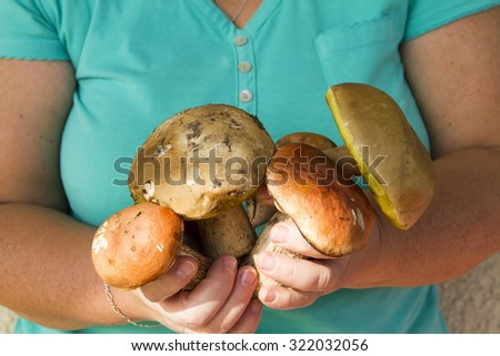 hand woman in a turquoise green t-shirt holding a bunch of mushrooms - stock photo