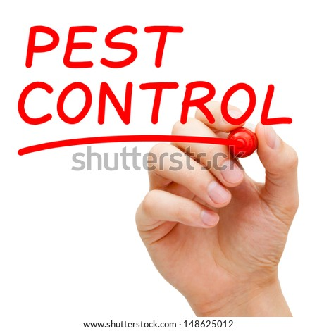 Hand writing Pest Control with red marker on transparent wipe board. - stock photo
