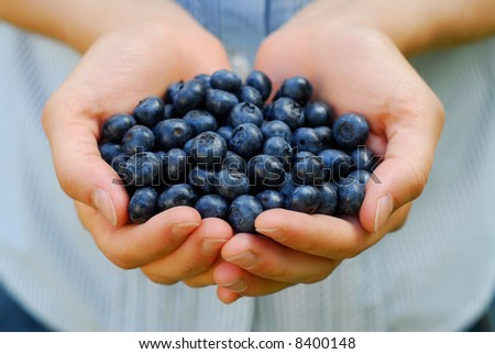 Handful of fresh organic blueberries - stock photo