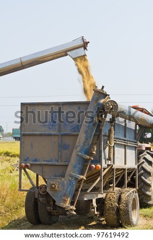 Handling of rice from combine harvester to small truck - stock photo