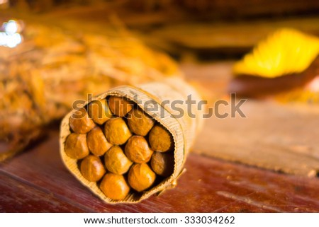 Handmade cigar live preparation, artisan made and packed - stock photo