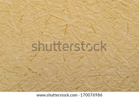 Handmade Mulberry Paper Texture, Photo on December 30, 2013