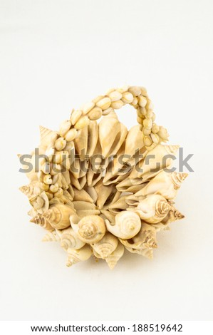 Handmade Textured Shells Vase on a White Background