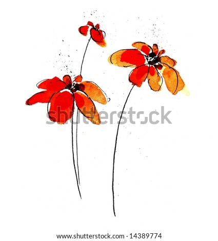 Handpainted minimalist daisy flower illustration on white background. Ink Painting. Art is created and painted by photographer - stock photo