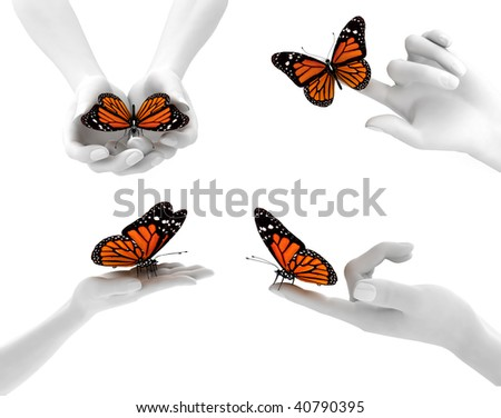 hands and butterflies - stock photo