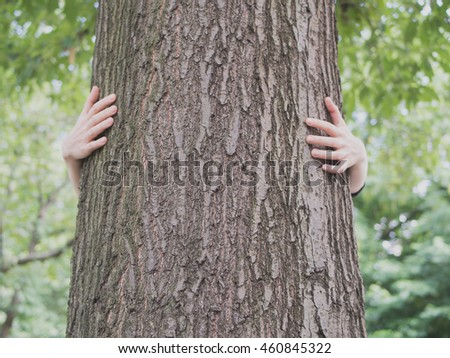 Hands embracing a tree trunk in a park
