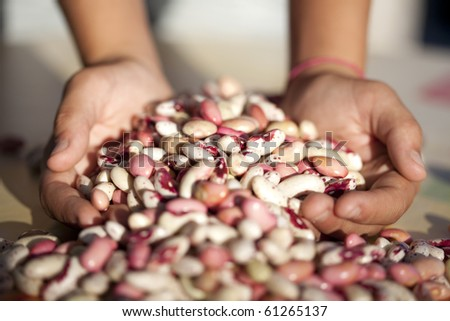 Hands full of beans (selective focus) - stock photo