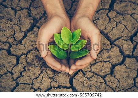 protect nature save future essay Save mother earth: an essay updated on october 17, 2017  forests maintain the balance of nature, the environment, the climate, the weather, and the composition of.