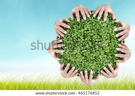 Hands holding circle green shrubs on blue sky and grass background. Beautiful landscape of blurred scene summer ocean beach. World Conservation concept.