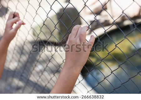 Hands holding fence on outdoor scenery during daylight - stock photo