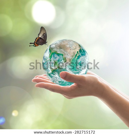 Hands holding green planet with butterfly in blurred green color bokeh background of natural tree leaves  facing sun flare : World environment day concept: Elements of this image furnished by NASA     - stock photo