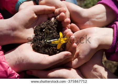 Hands holding ground with plants. Ground in hands families - stock photo