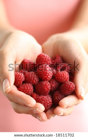 Hands holding red raspberries
