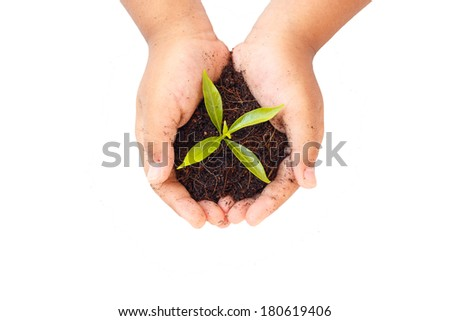 hands holding soil and young plant. Ecology concept