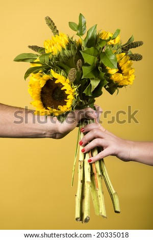 Hands holding sunflowers - stock photo
