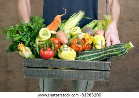 Hands holding wooden crate with fresh vegetables - stock photo