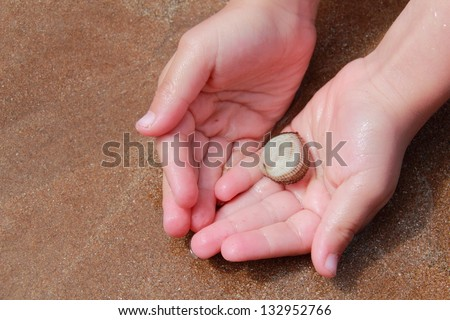 Hands in the sand and sea water