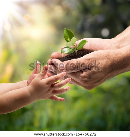 hands of a child taking a plant from the hands of a man - grass background - stock photo
