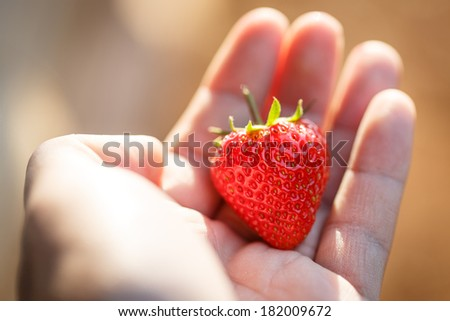 Hands of a girl holding fresh a strawberry, close-up