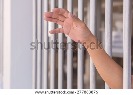 Hands of a man try to get out from jail. - stock photo