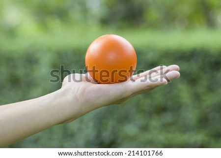 Hands of a woman holding a stress ball - stock photo
