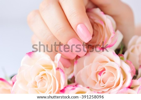 Hands of a woman with pink manicure on nailsand roses - stock photo