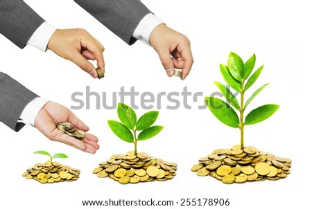 Hands of businessmen giving coins to trees growing on coins - stock photo
