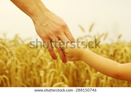 hands of child and father on wheat field  - stock photo