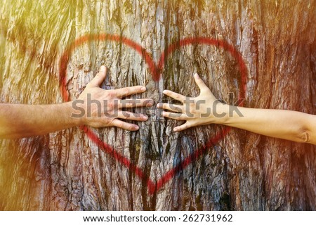 Hands of couple in love hugging a tree with painted red heart with yellow and golden sunlight  - stock photo