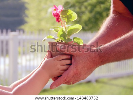 Hands of elderly man and baby holding a flower in the pot against a green natural background in spring. Ecology concept - stock photo