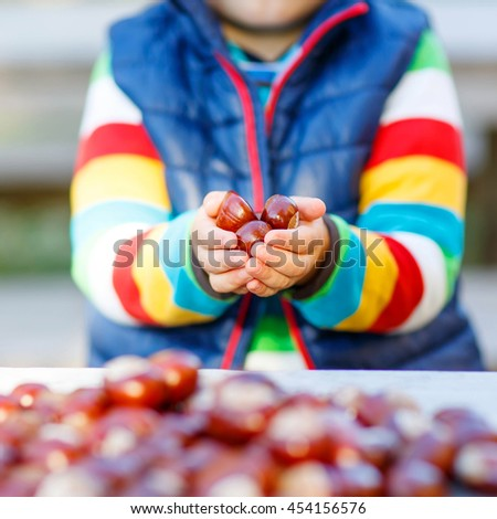 Hands of little kid playing with chestnuts in autumn park. Child having fun on cold fall sunny day. Happy childhood and outdoor leisure concept. - stock photo