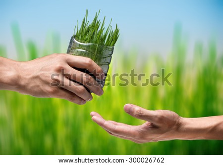 hands of man taking a plant from the hands of a man - Nature background