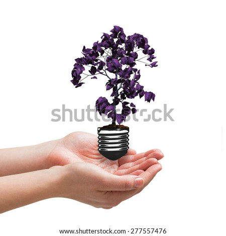 Hands presenting against empty light bulb - stock photo