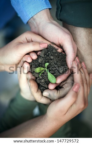 hands surround a new seedling, protecting our environment - stock photo