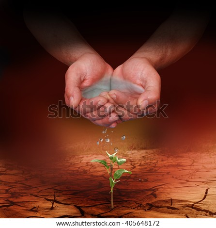 Hands watering a young plant growing trough dead ground - stock photo