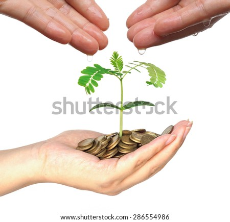 hands watering trees on coins - Business growth with csr practice