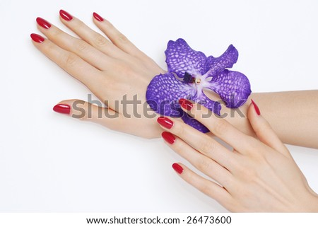 Hands with beautiful pink manicure and purple orchid - stock photo