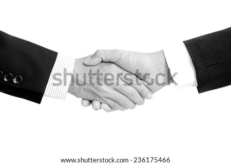 Handshake of businessmen - success, dealing, greeting & business partner concepts - stock photo