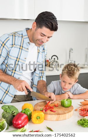 Handsome father teaching his son how to chop vegetables at home in kitchen - stock photo