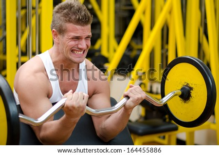 Handsome young man training biceps lifting barbell on bench in a gym - stock photo