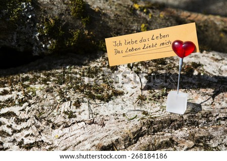 "handwritten german quote ""Ich liebe das Leben und das Leben liebt mich"" (I love my life and my life loves me) clipped on a heart on wood - stock photo"