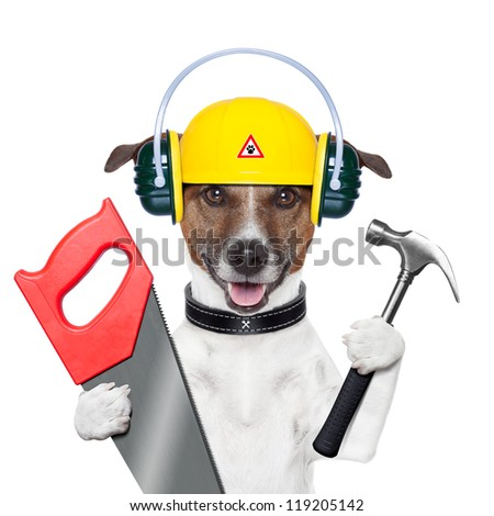 handyman and craftsman dog with hammer and saw - stock photo