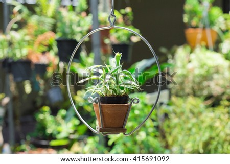 Hanging baskets of flowers in the garden - stock photo