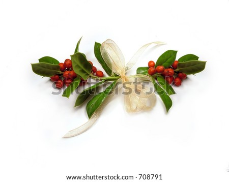 Hanging Holly - stock photo
