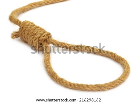 Hanging noose over white background - stock photo