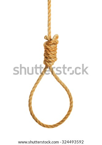 Hangmans noose isolated on a white background - stock photo